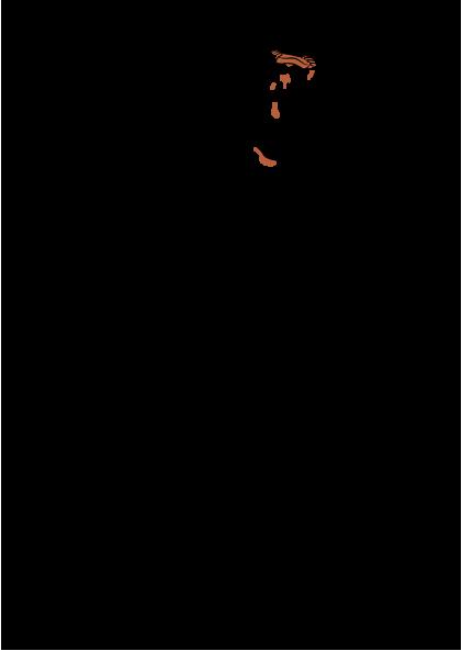 sinstbbq_logo